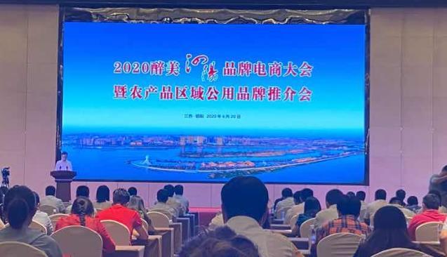 金厨娘电商部参加2020醉美泗阳电商品牌大会