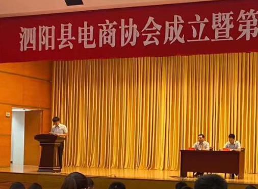 金厨娘参加泗阳电商协会成立大会